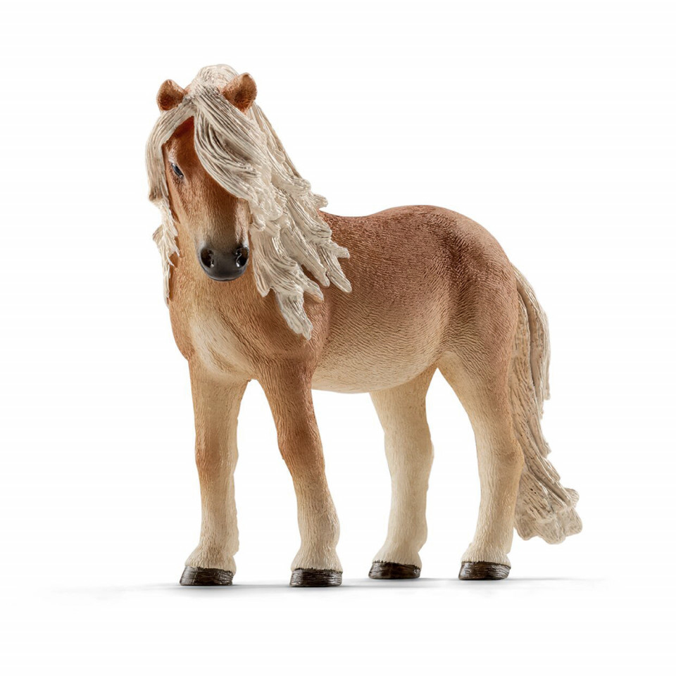 Island Pony Stute