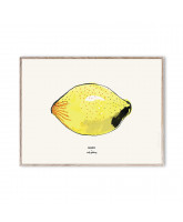MADO x Soft Gallery Poster Lemon - 40x30 cm