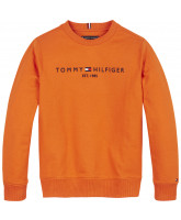 Sweatshirt in Orange