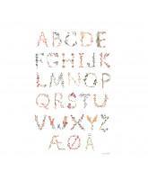 Poster - Dänisch Alphabet 50x70 cm